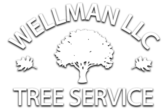 Wellman Tree Services Co.