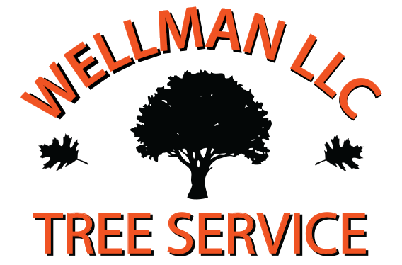 Wellman Tree Service